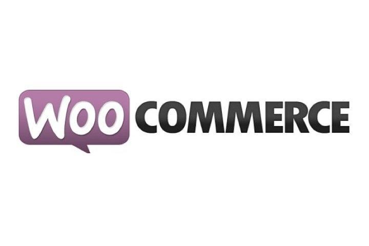 Recensioni WooCommerce: Il principale plugin di e-commerce per wordpress - appvizer