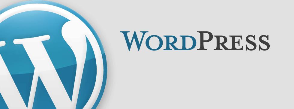 Recensioni WordPress: Leader mondiale di CMS Open Source - appvizer